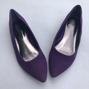 Purple Suede Pointed Toe Flat